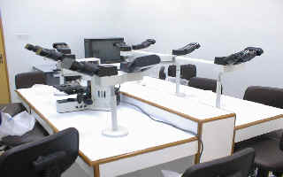 Multiviewer microscope